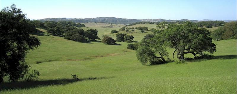 Santa Rosa Plateau Ecological Preserve