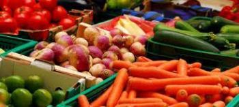 Temecula Certified Farmer's Market